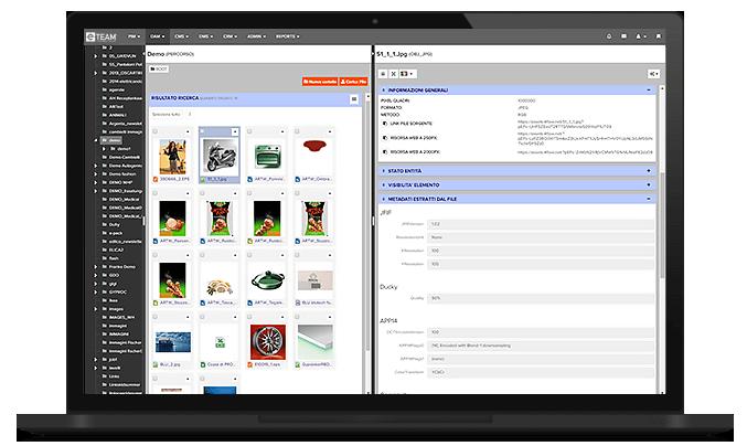 Online DAM database